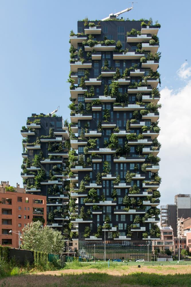 Vertical Forest: Photo 6
