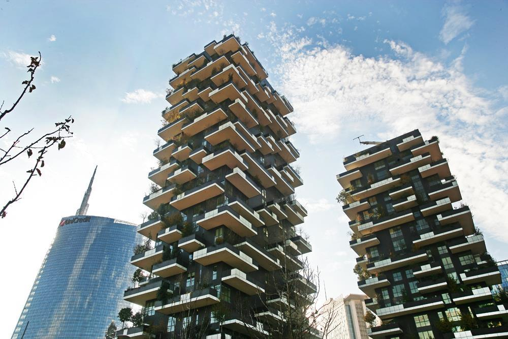 Vertical Forest: Photo 10