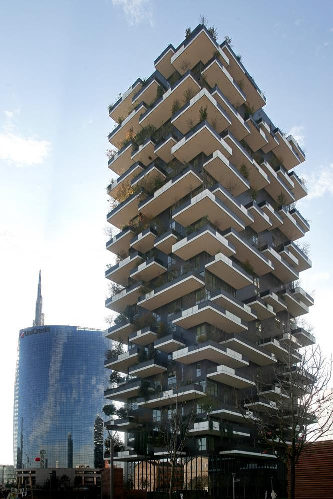 Vertical Forest: Photo 12