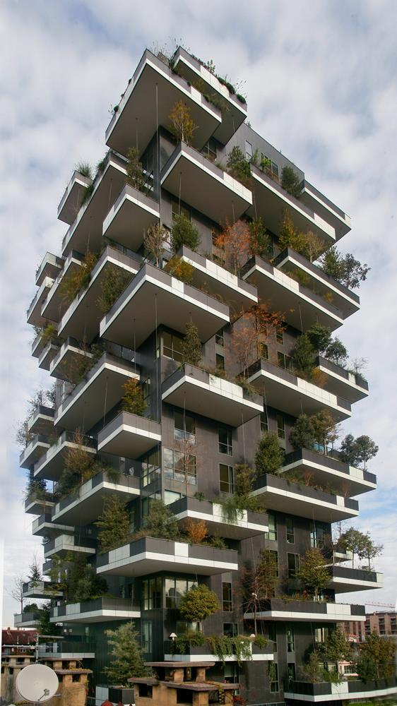 Vertical Forest: Photo 13
