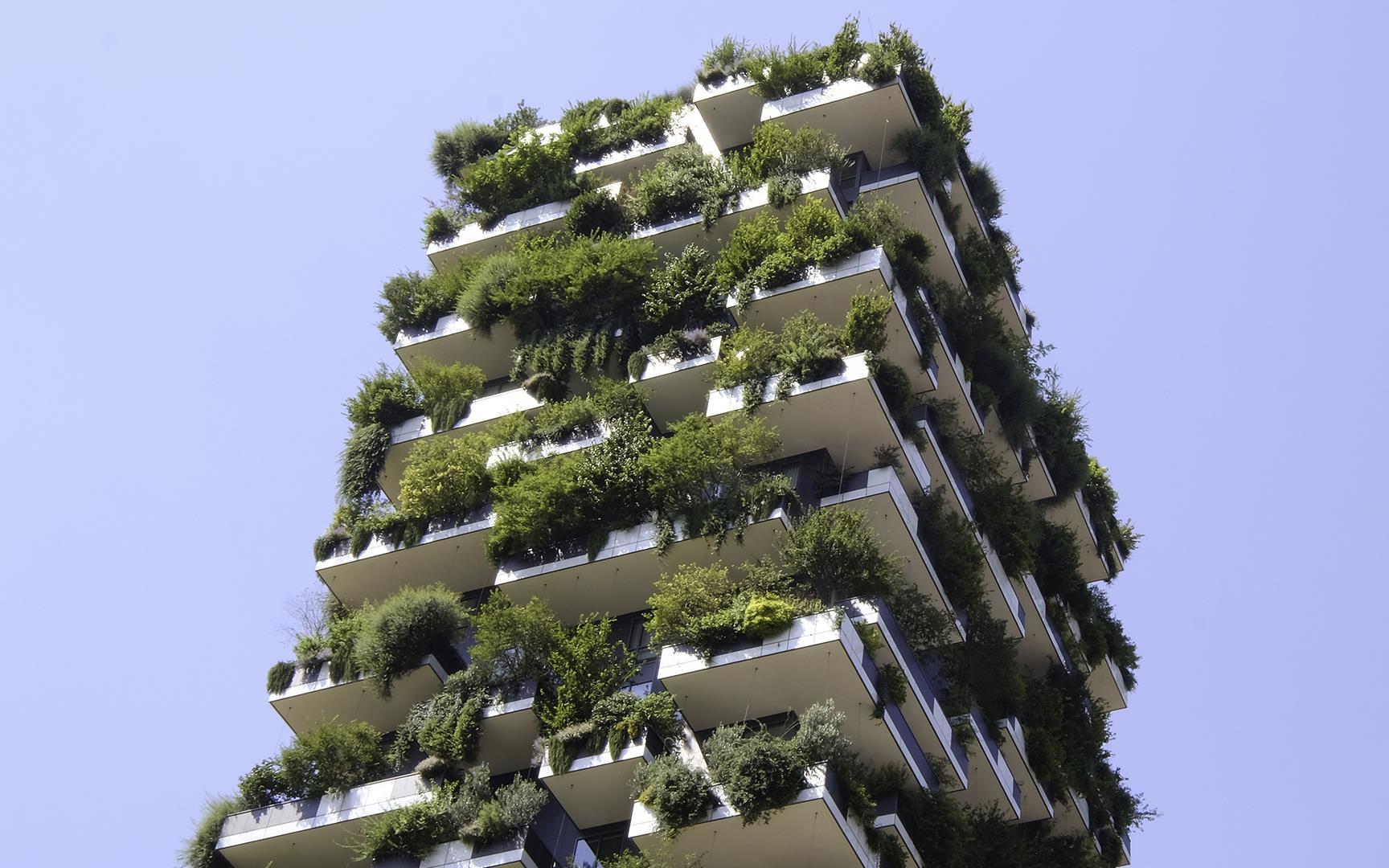 Vertical Forest: Photo 5